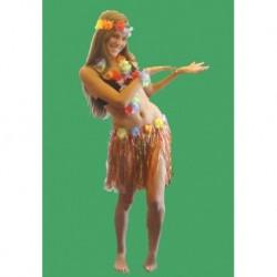 hawaiská tanečnice