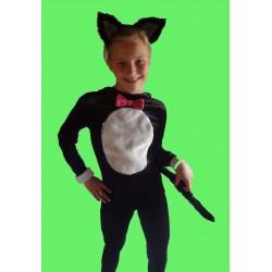 kočka černá