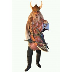viking - bojovník